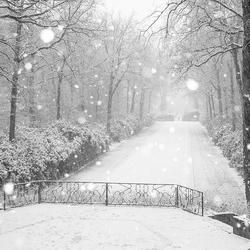 Even winter 2