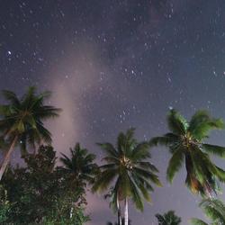 Dark island nights