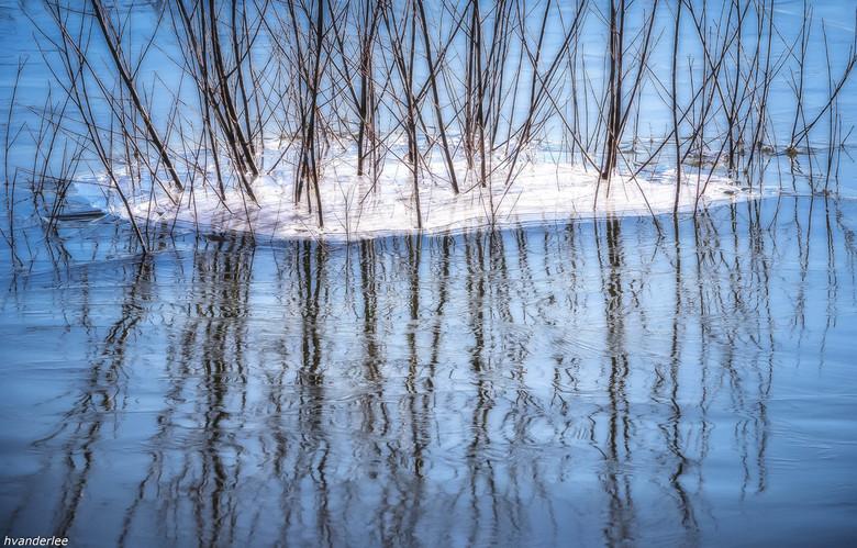 abstracte reflectie - bevroren takken in de uiterwaarden van de Waal in spiegeling