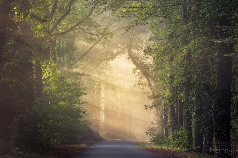 Fairytale road