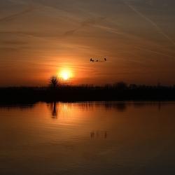 Het Zwanenmeer.