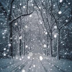 Sneeuw in Nijmegen!