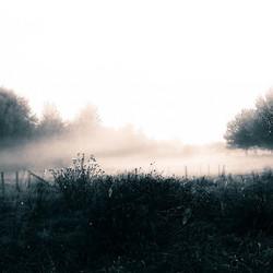 Goede morgen Limburg