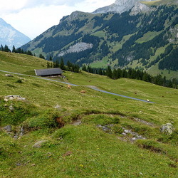 Monte Gambarogna.