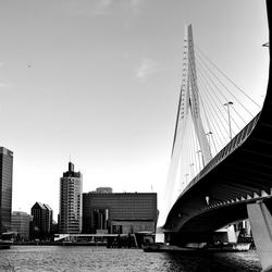 'Erasmusbrug Rotterdam'