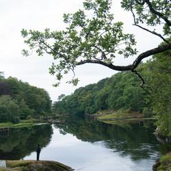 DSC02974 Landschap Schotland