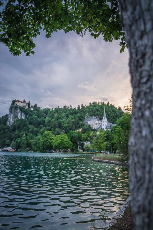Oostenrijk-Slovenie-107 - avondfoto meer van Bled met zicht op kasteel
