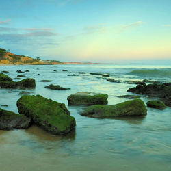 Algarve coast