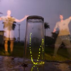 vuurvlieg in glas
