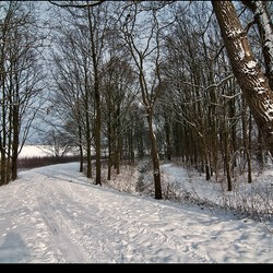sneeuw-5