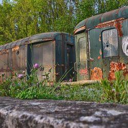 treinen tussen de bloemetjes