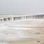 Snow storm on beach Domburg