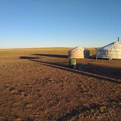 Leven in de Gobiwoestijn