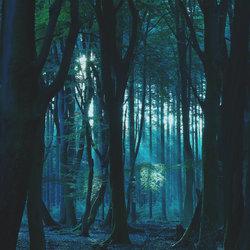 Mystic Moments....