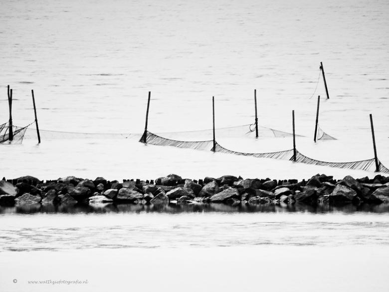 Lauwersmeer in zwartwit