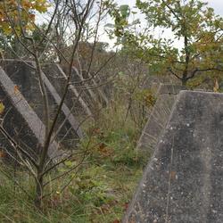 anti-tank wall
