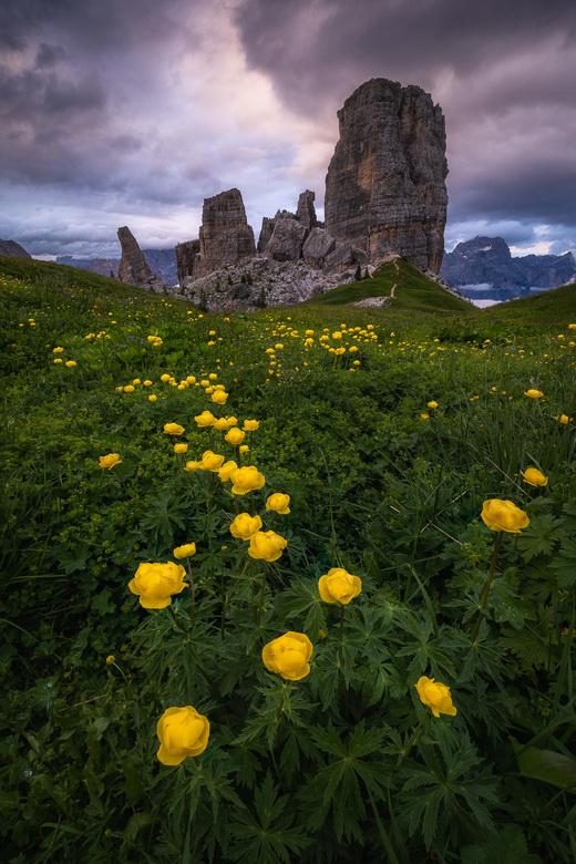 De Vijf Torens -