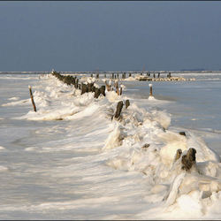 Waddenkust in de winter