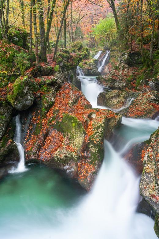 Autumn falls - Een prachtige serie aan kleine watervallen gelegen in een bos in Slovenië.