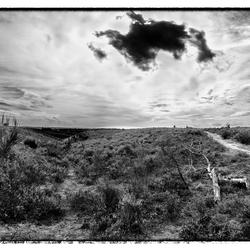Panorama Veluwe