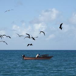 Visser op de Caribische zee