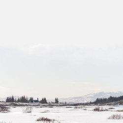 IJsland - ÞINGVELLIR IV