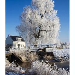 Winter in Terheijden!
