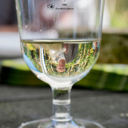Captured in a glass of wine