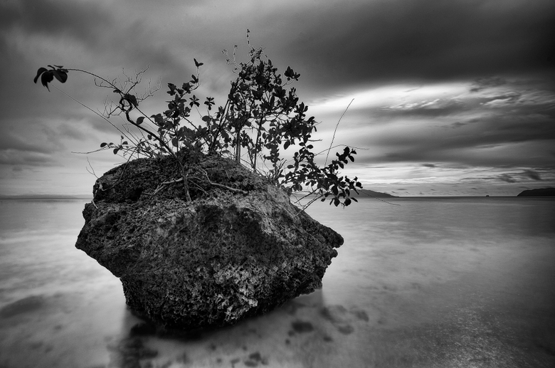 Lone rock - Eiland van dood koraal bij zonsondergang in het Raja Ampatgebied van Papua-Indonesie.