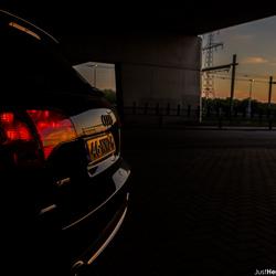 Audi enjoying the sunset.