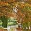 Herfst op haar mooist