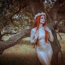 Latex Fairy