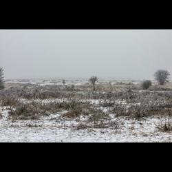 Winter - Markiezaatsmeer