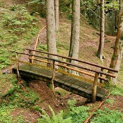 Harz gebied Duitsland.