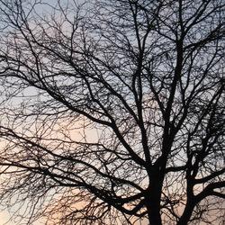 winterlicht 01
