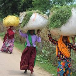 India,महिलाओं
