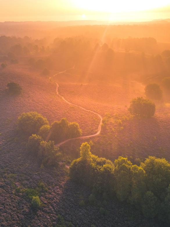 Magische zonsopgang over de posbank!