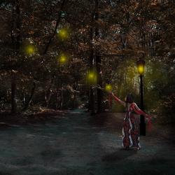 licht bollen in het bos
