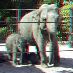 Artis Zoo Amsterdam 2017 3D