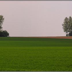Landschap in Haspengouw