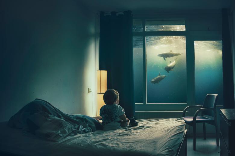 Sea everything -