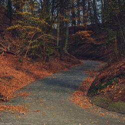 Uiterwaarden-Holleweg bij Wageningse berg