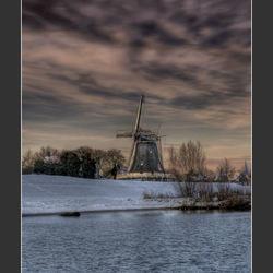 Purple Mill