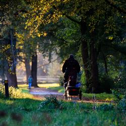 De fietser, de wandelaar en het gouden uurtje...
