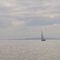 Zeilboot op het kanaal