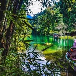Khao sok jungle hike!