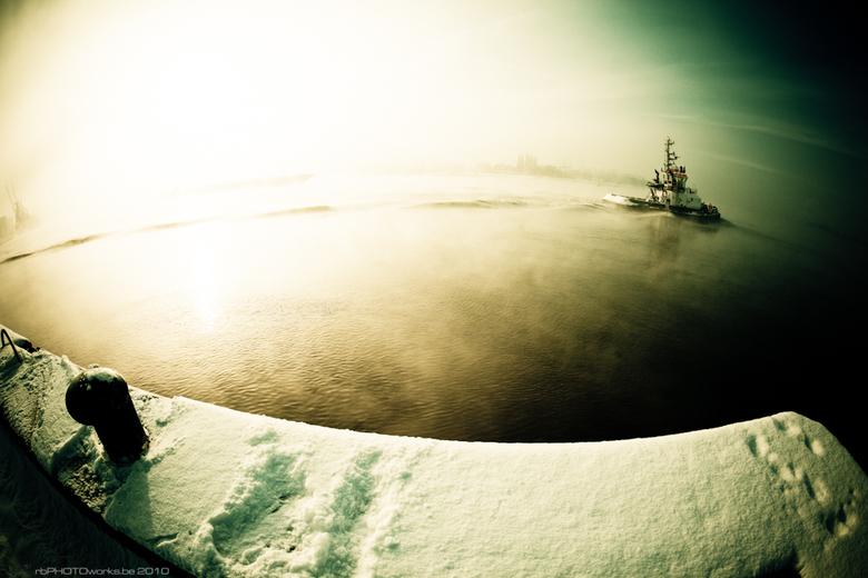 Aan de oevers van de Schelde... - Toch maar eens de koude getrotseerd omdat het zo'n prachtig mistig zonnetje was dat de hemel kleurde. Normaal k
