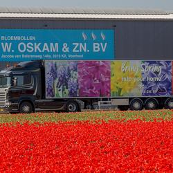 Truckwereld