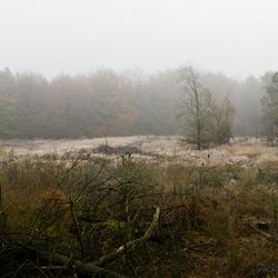 Een koude herfstmorgen 2