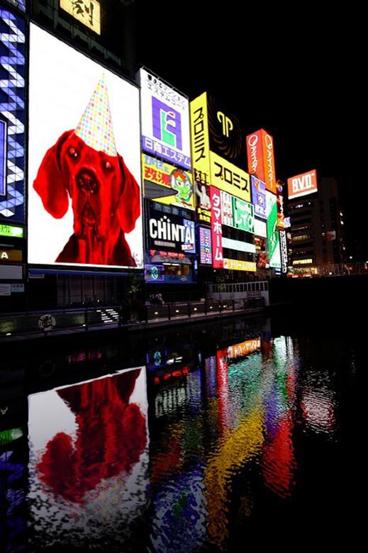 Floor - billboard